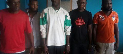5 trafiquants d'ivoire arrêtés à Ouesso