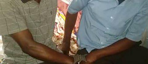 Deux individus arrêtés avec une peau de panthere